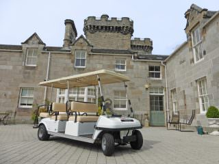 Transport buggy for sale